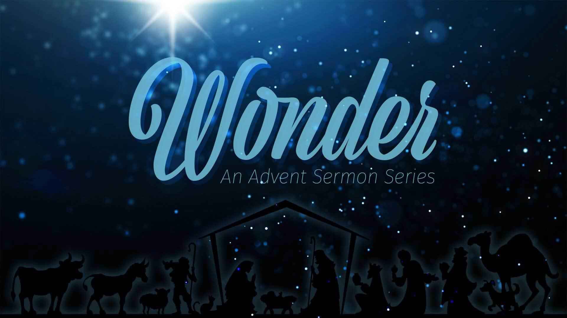 Wonder -- Week 4